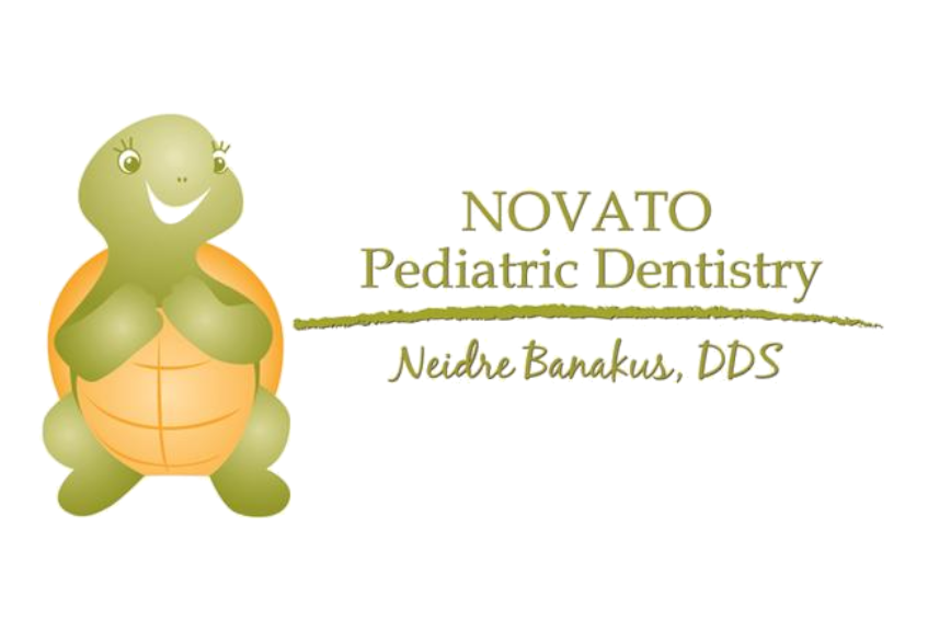 Novato Pediatric Detistry Smiling Turtle