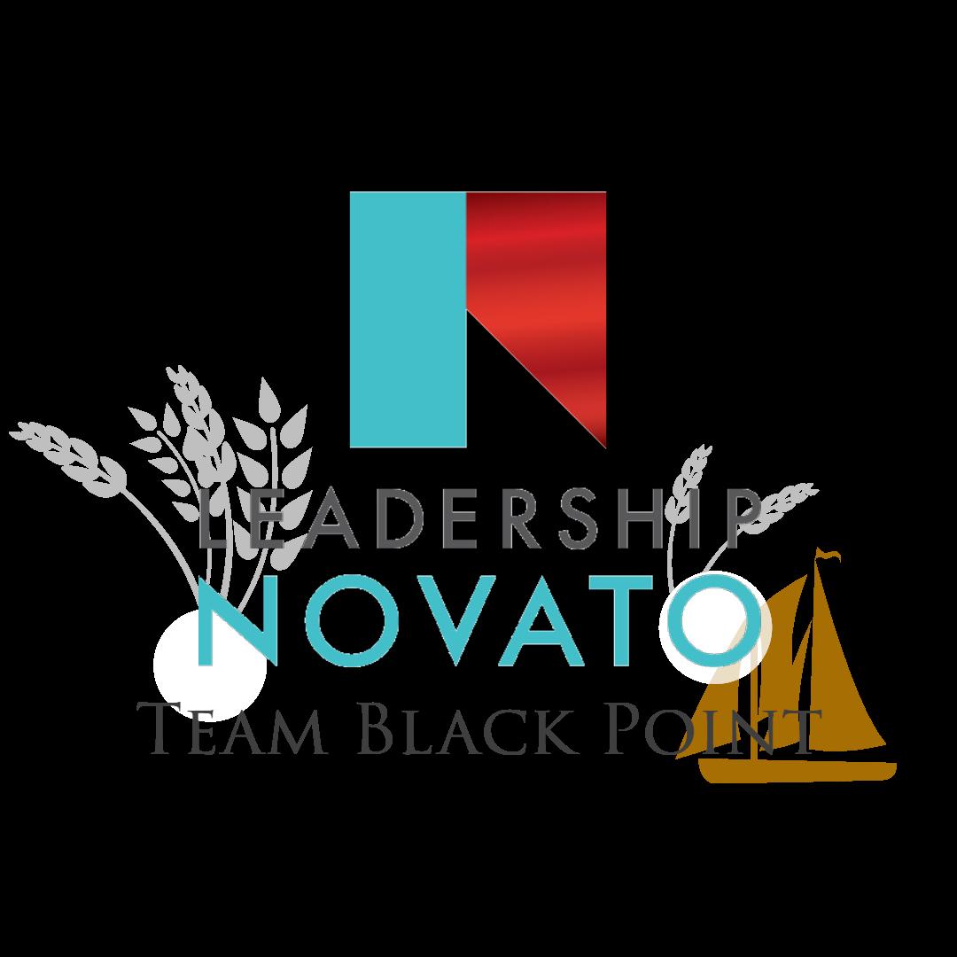 LN Black Point Vert Logo