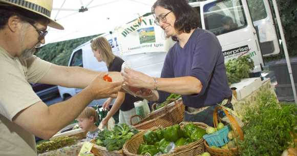 Woman selling vegetable at a farmers market