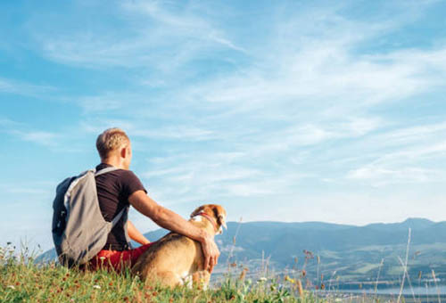 Man and dog sitting on a hill overlooking mountains and a lake