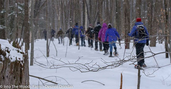 group of people snowshoeing in the woods
