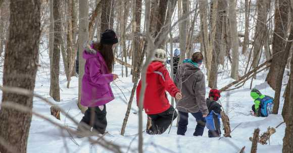 Group of people snowshoeing on snowy winter trail