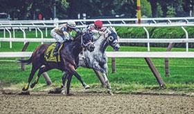 horse-racing-track-280x165