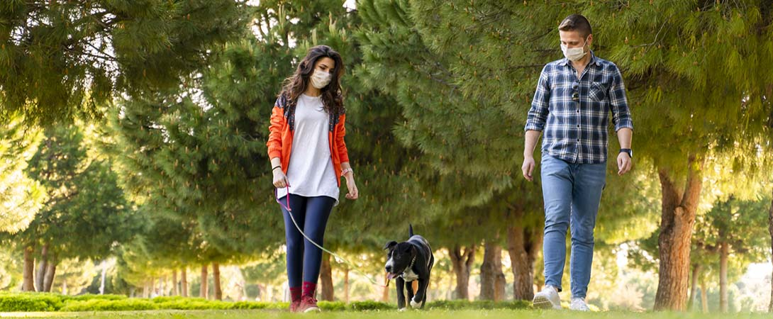 couple walking dogs with masks on
