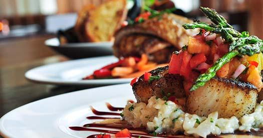 Gourmet dinner plates