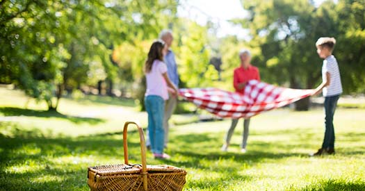 Family placing blanket in park on sunny a day
