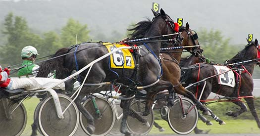 harness track horse race