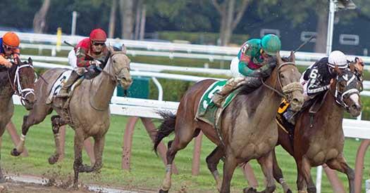 horses racing on flat track