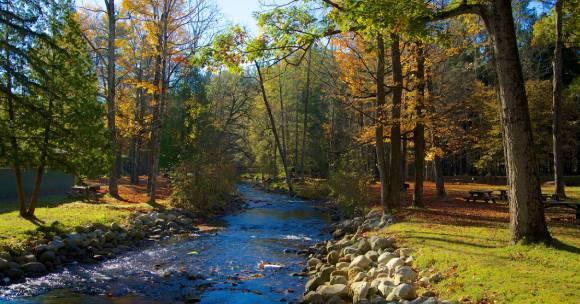babbling river in park setting