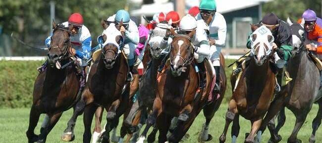 horses running on race track