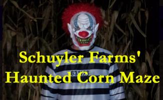 scary clown in corn maze