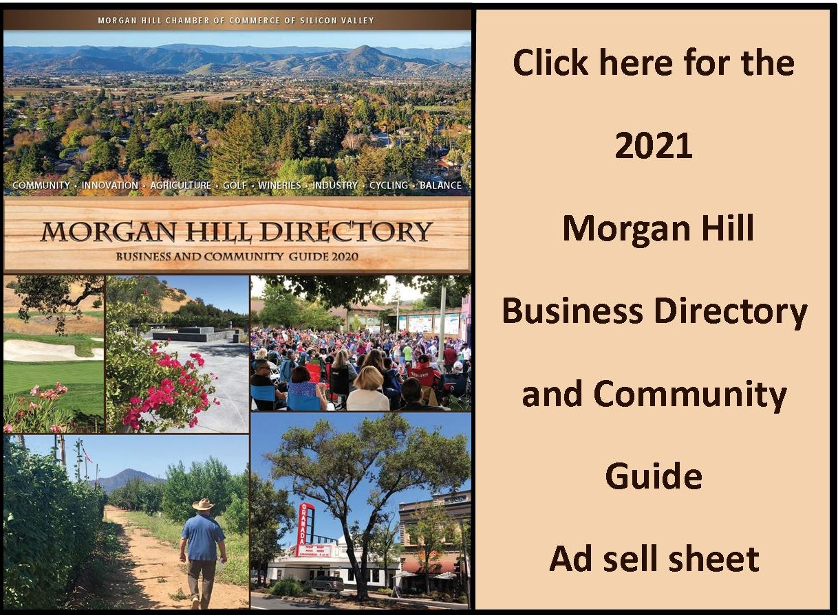 Dir. web ad sales with 2020 cover