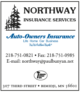Northway Insurance Services Logo
