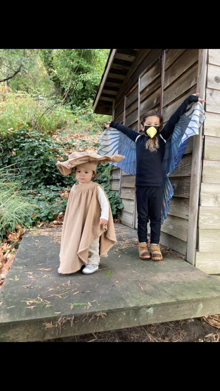 Costume - Group/Couple - Bird & Mushroom