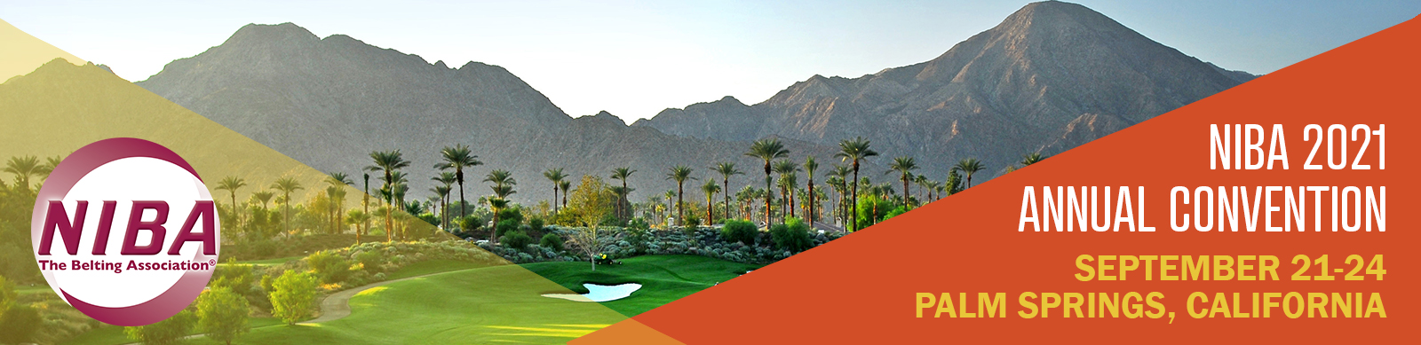 Palm Springs web banner for convention page