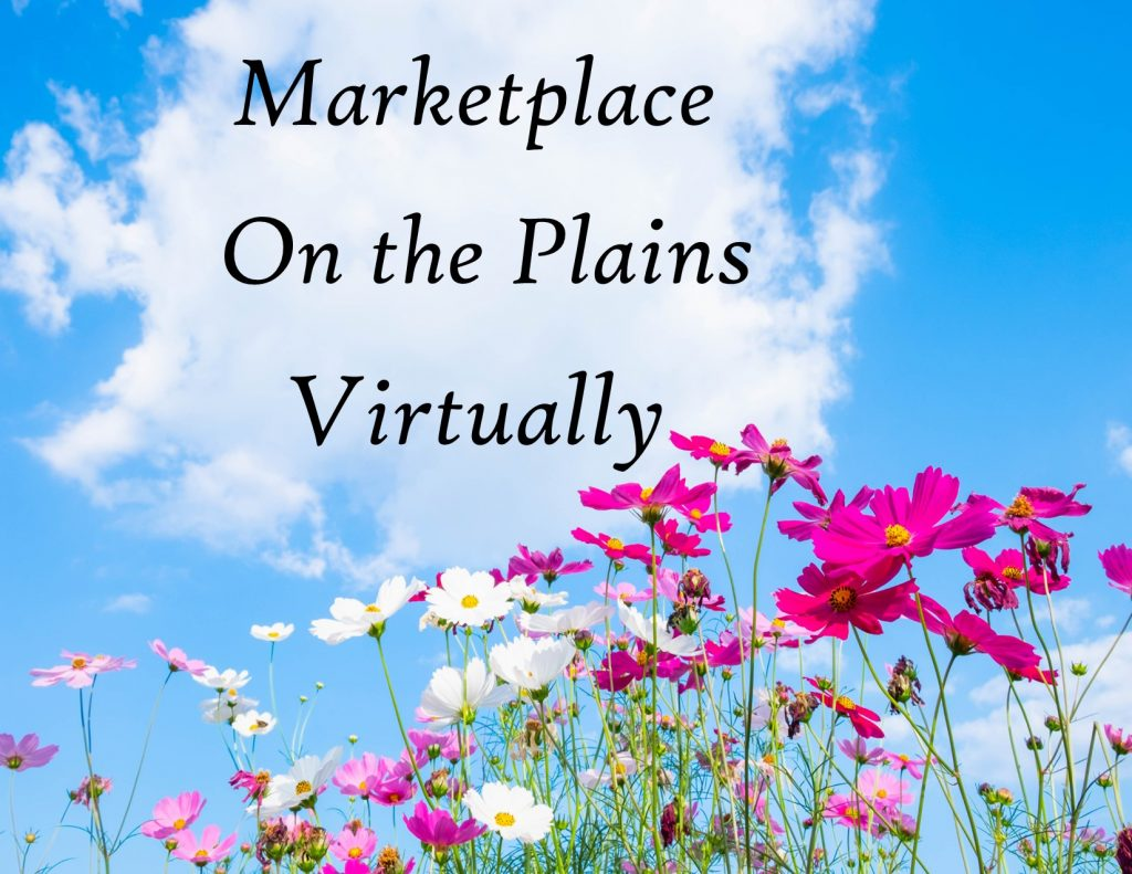 MK on Plains Virtually-- HEADING-only SpSum