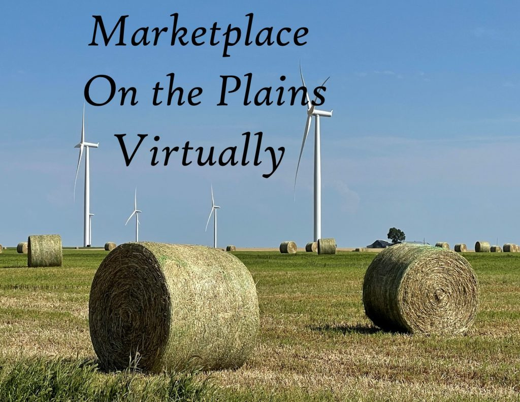 MK on Plains Virtually-- HEADING-only fall hay
