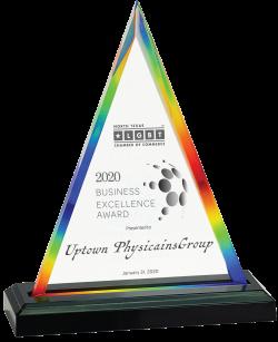 2020 BusinessExcellenceAward-250