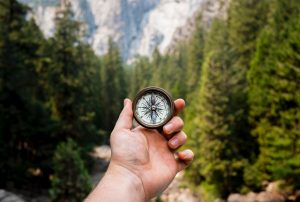 Compass held against forest of pine trees