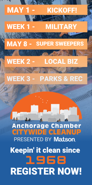 Citywide Cleanup Ads 300X600