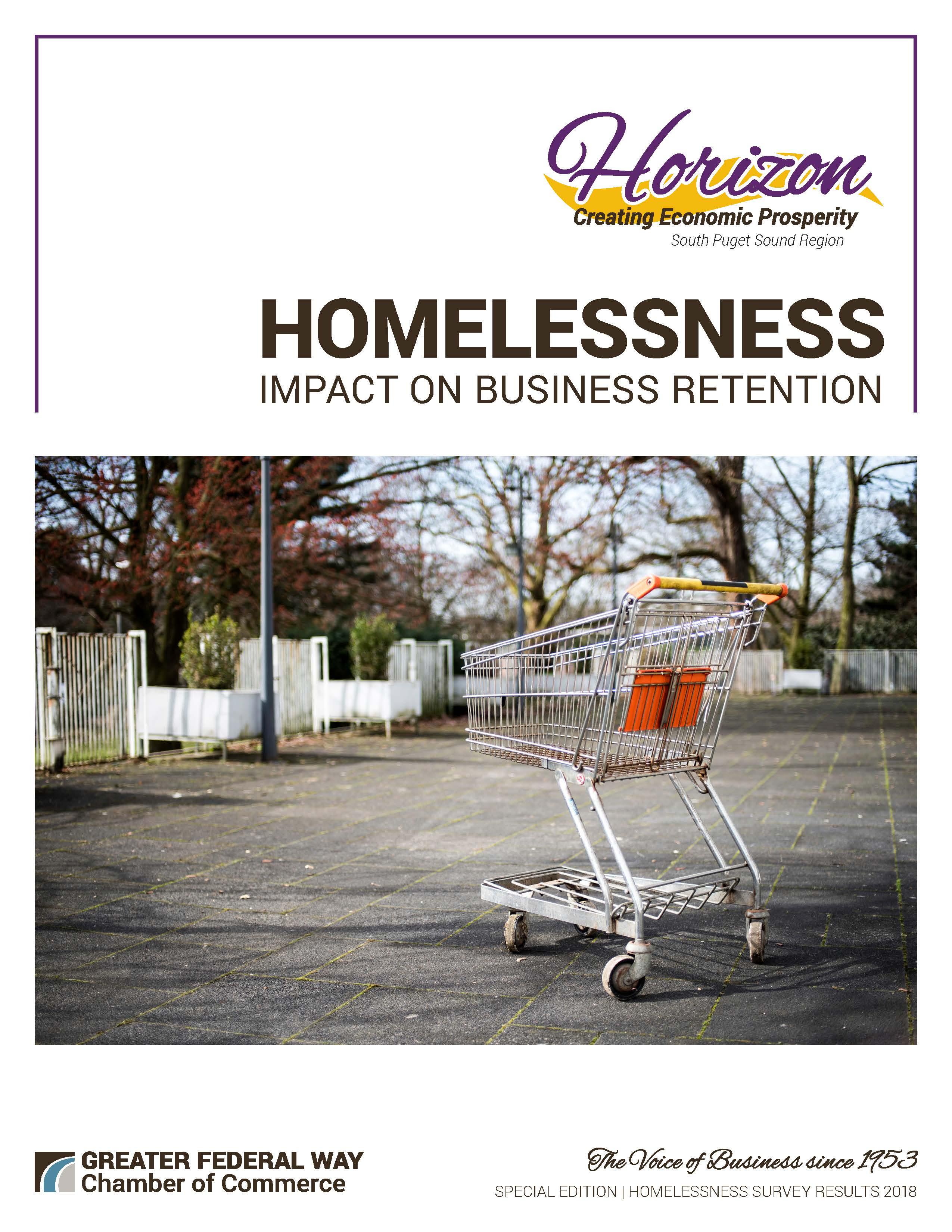 Horizon Special Edition - Homelessness Survey