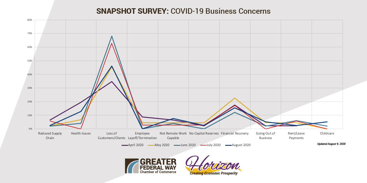 Overall Results COVID Business Concerns - Aug 2020 FINAL