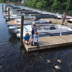Bridgewater Marina Feed the Fish