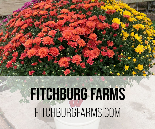 fitchburg farm button