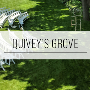 quiveys