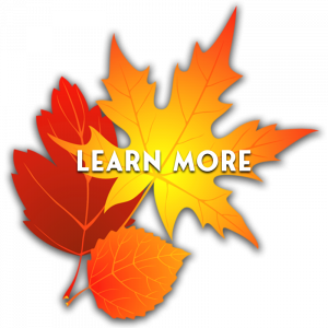 learn more fall button