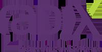 radix-logo-completo-en